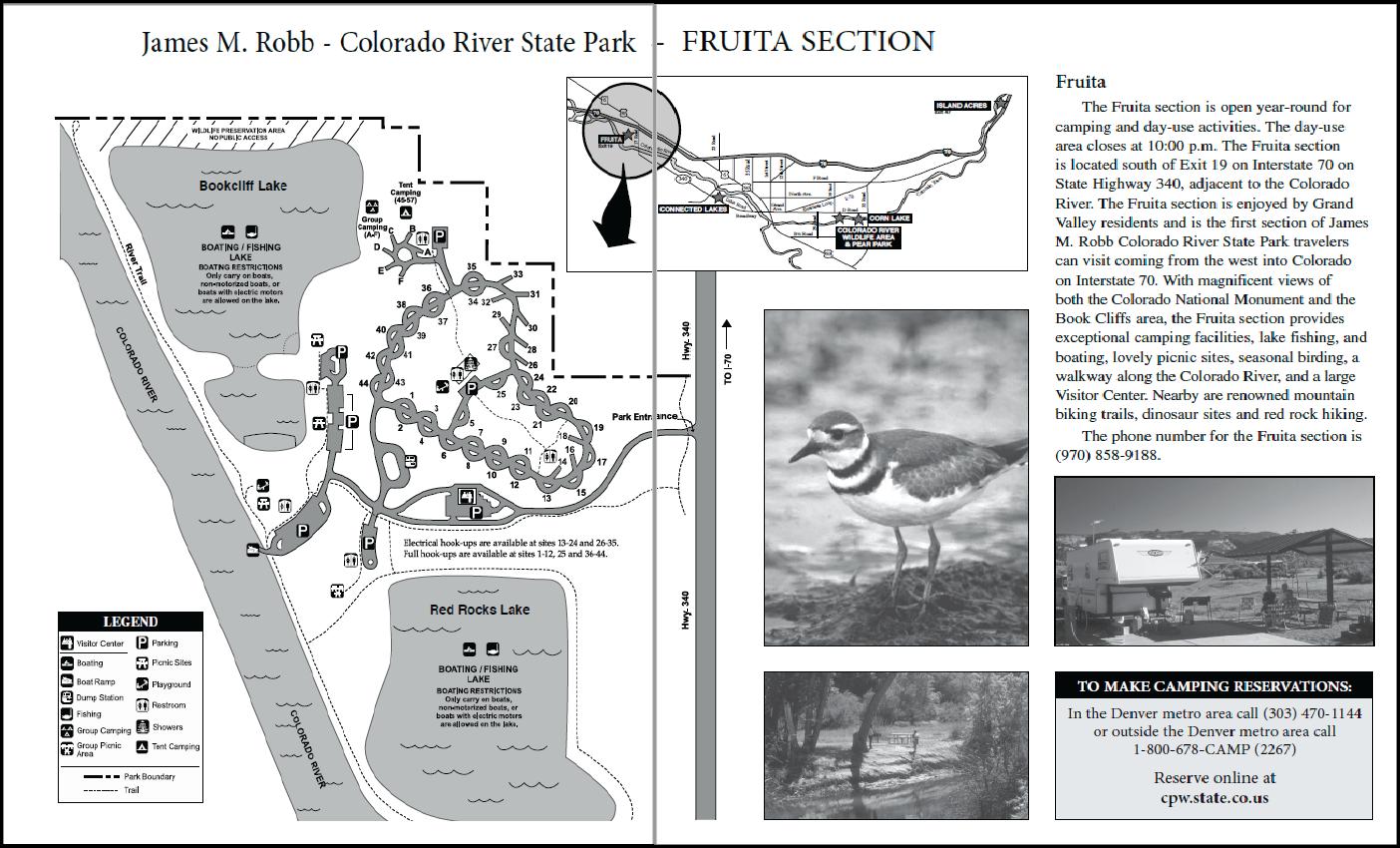Fish the Lower Colorado River - Western Colorado Outdoors