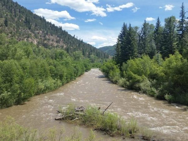 Fish The West End Western Colorado Outdoors